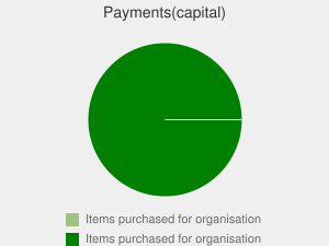 Payments(capital)