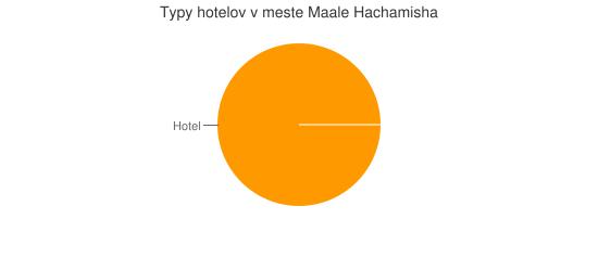 Typy hotelov v meste Maale Hachamisha