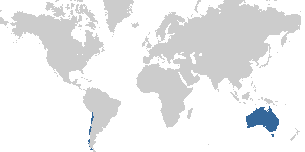 Alvaro's travel map