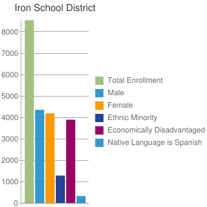 Iron School District
