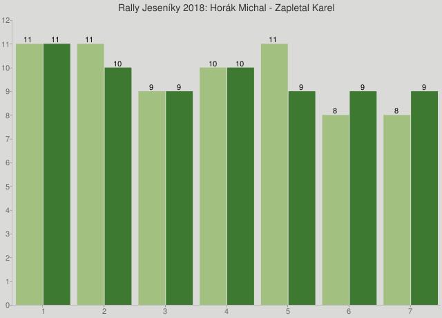 Rally Jeseníky 2018: Horák Michal - Zapletal Karel