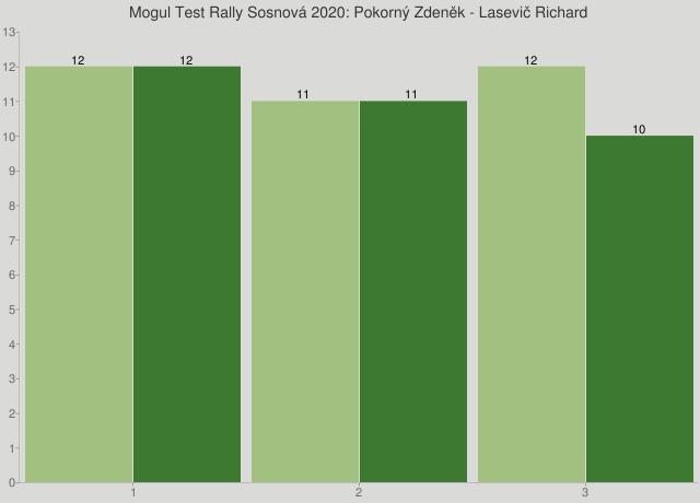 Mogul Test Rally Sosnová 2020: Pokorný Zdeněk - Lasevič Richard