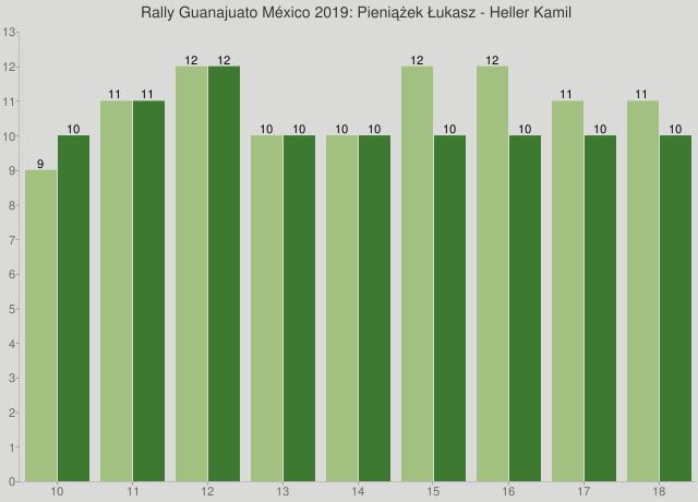 Rally Guanajuato México 2019: Pieniążek Łukasz - Heller Kamil