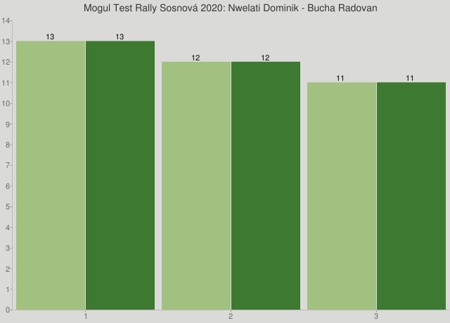 Mogul Test Rally Sosnová 2020: Nwelati Dominik - Bucha Radovan