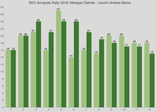 EKO Acropolis Rally 2018: Melegari Zelindo - Cecchi Andrea Marco