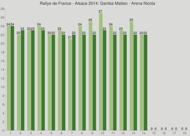 Rallye de France - Alsace 2014: Gamba Matteo - Arena Nicola