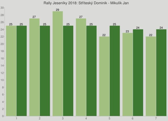 Rally Jeseníky 2018: Stříteský Dominik - Mikulík Jan