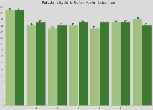 Rally Jeseníky 2018: Baďura Martin - Nešpor Jan