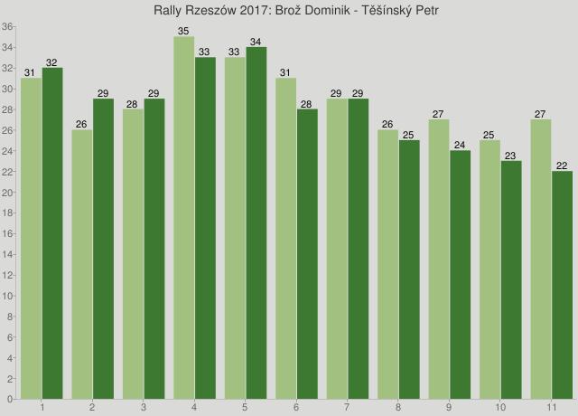 Rally Rzeszów 2017: Brož Dominik - Těšínský Petr