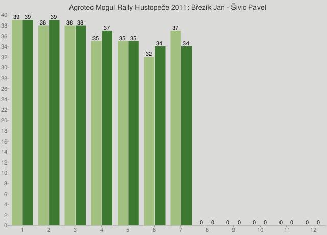 Agrotec Mogul Rally Hustopeče 2011: Březík Jan - Šivic Pavel