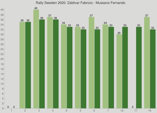 Rally Sweden 2020: Zaldivar Fabrizio - Mussano Fernando