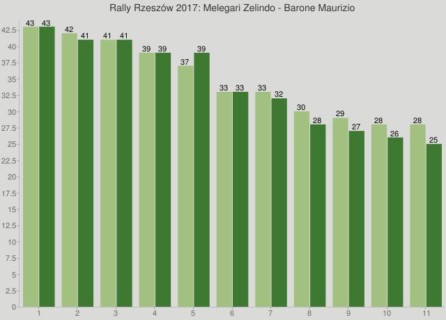 Rally Rzeszów 2017: Melegari Zelindo - Barone Maurizio