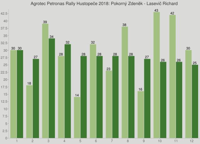 Agrotec Petronas Rally Hustopeče 2018: Pokorný Zdeněk - Lasevič Richard