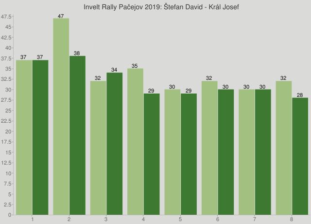 Invelt Rally Pačejov 2019: Štefan David - Král Josef