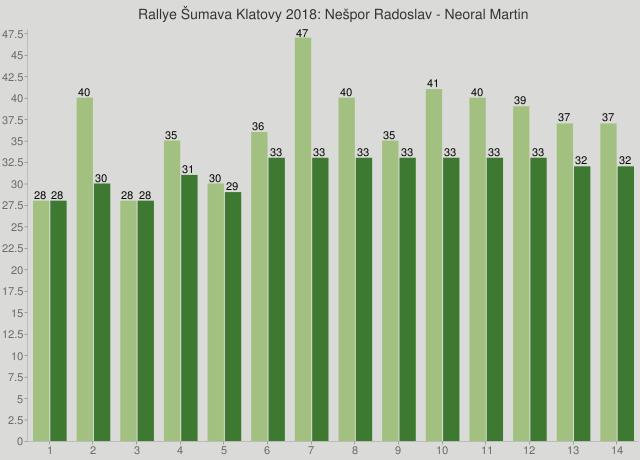 Rallye Šumava Klatovy 2018: Nešpor Radoslav - Neoral Martin