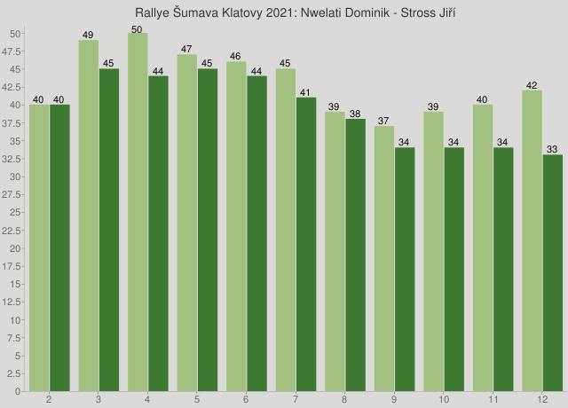 Rallye Šumava Klatovy 2021: Nwelati Dominik - Stross Jiří
