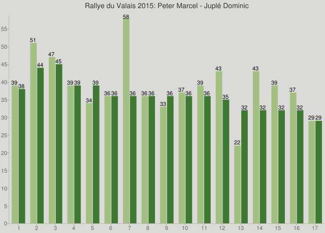 Rallye du Valais 2015: Peter Marcel - Juplé Dominic