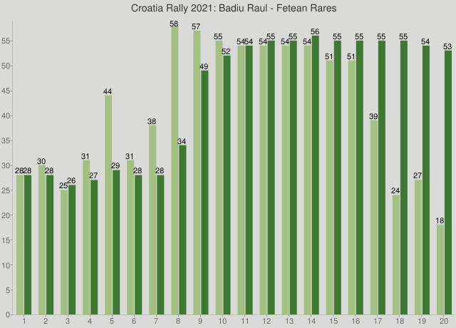 Croatia Rally 2021: Badiu Raul - Fetean Rares