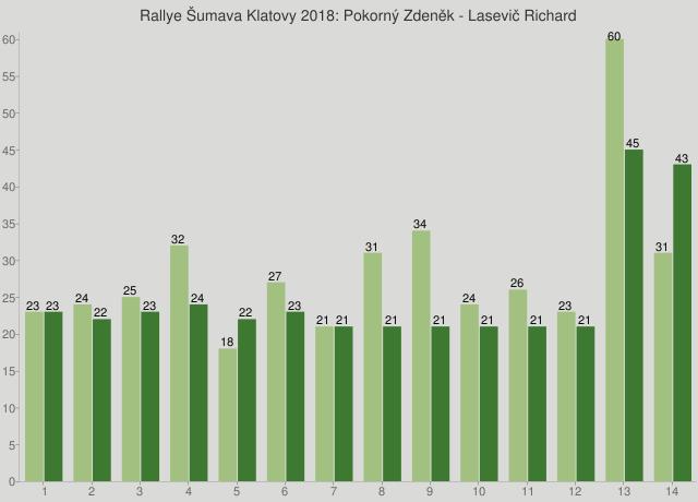 Rallye Šumava Klatovy 2018: Pokorný Zdeněk - Lasevič Richard