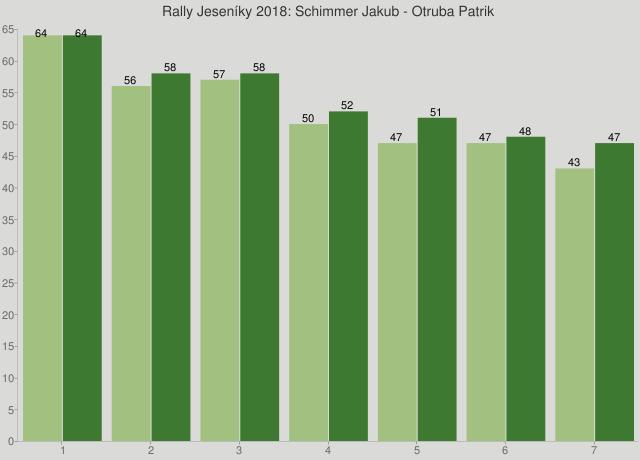 Rally Jeseníky 2018: Schimmer Jakub - Otruba Patrik