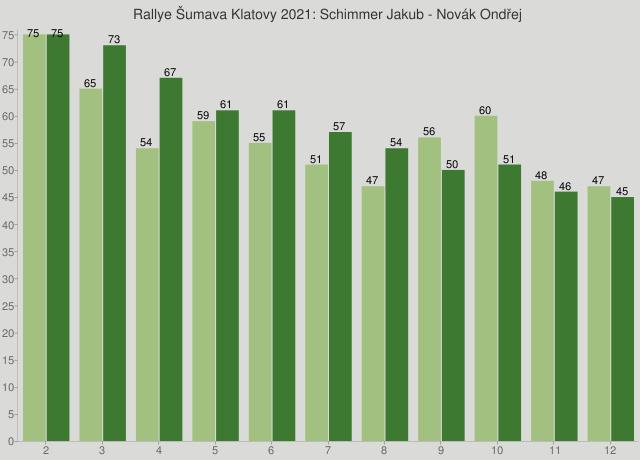 Rallye Šumava Klatovy 2021: Schimmer Jakub - Novák Ondřej