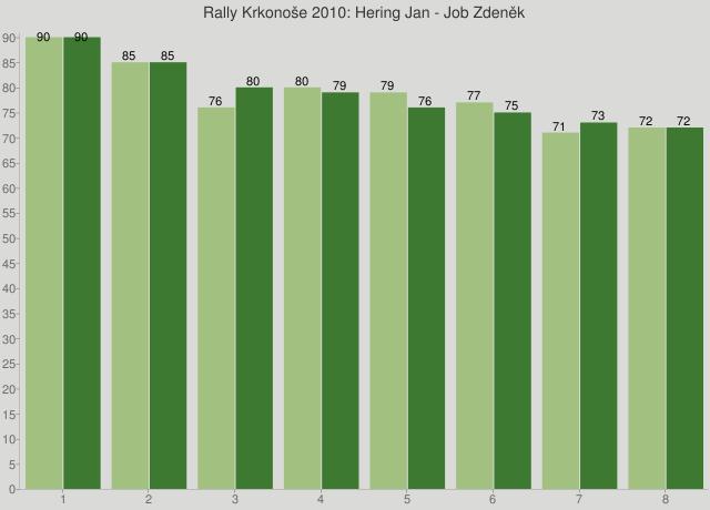 Rally Krkonoše 2010: Hering Jan - Job Zdeněk