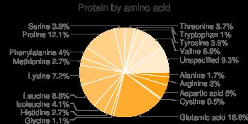 Cheese, soft type, goat, amino acids