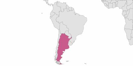 SMS sending Argentina