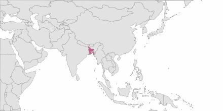 Envoi de SMS Bangladesh