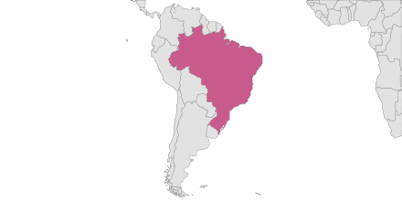 Envoi de SMS Brésil