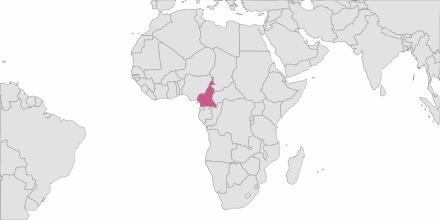 Envoi de SMS Cameroun