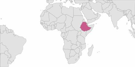SMS sending Ethiopia