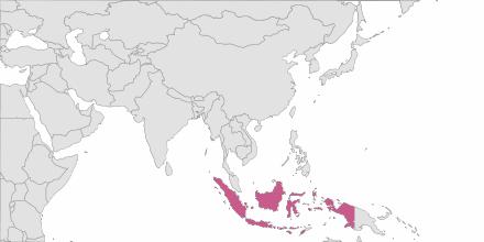 SMS sending Indonesia