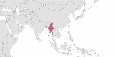 SMS sending Burma
