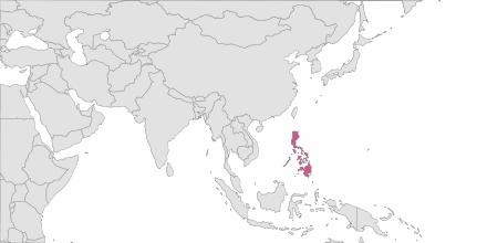 SMS sending Philippines