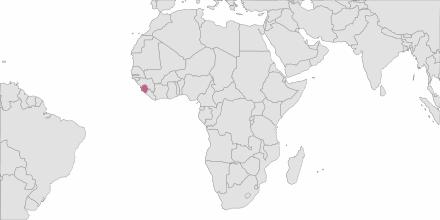SMS sending Sierra Leone