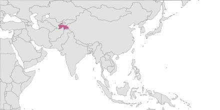 SMS sending Tajikistan