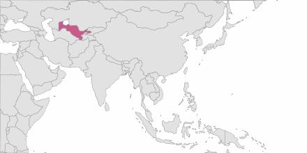 SMS sending Uzbekistan