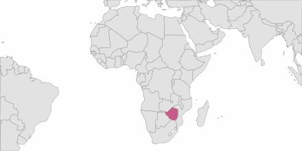 SMS sending Zimbabwe