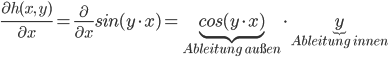 \frac{\partial h(x,\ y)}{\partial x}= \frac{\partial}{\partial x}sin(y\cdot x) = \underbrace{cos(y\cdot x)}_{\textit{Ableitung au\ss en}} \cdot \underbrace{y}_{\textit{Ableitung innen}}