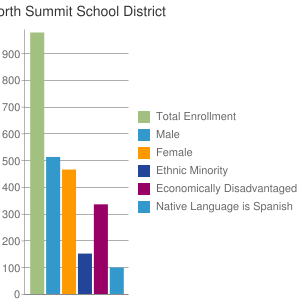 North Summit School District